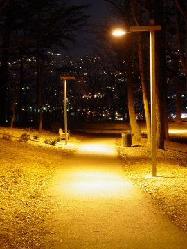 Path in Mill Mountain Park in Roanoke, Virginia at night