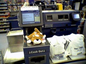 Stuffed cat on Wal-Mart self checkout