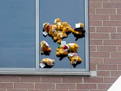 Can anyone explain to me how all these suction-cup Garfield dolls got stuck to this fourth or fifth story window that doesn't appear to be capable of opening? It's been like that for a while, too, as I go past this building every day on my way to and from work.