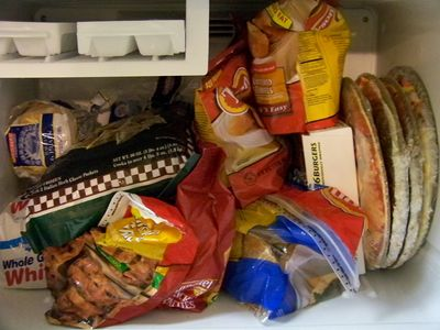 The contents of my freezer