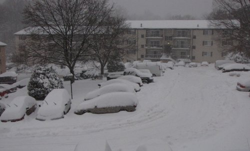 As you can see, my apartment complex is very much snowed in. Just about everyone's car is covered in snow!