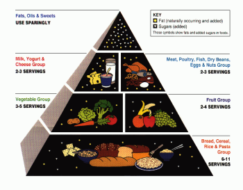The old Food Pyramid