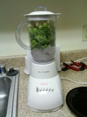 When I was finished jamming everything in there, the blender looked like this.