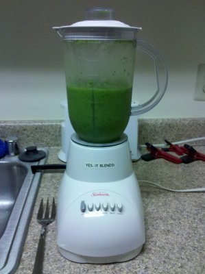Once the spinach and such got going, it quickly became a proper smoothie, and was very green.