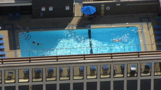 Two men swimming on a rooftop pool near the Hancock Center