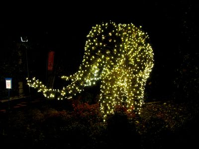 These two photos show a wicker elephant all lit up, under flash and without.  My understanding is that this elephant is there year-round, but it's only lit up for ZooLights.  Pretty neat nonetheless, though.