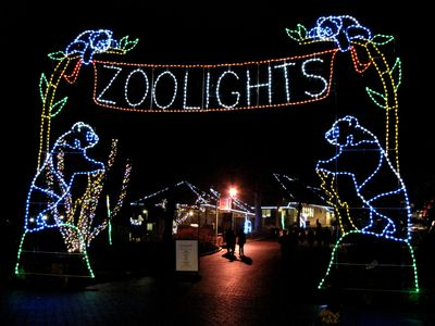 ZooLights entrance display at the other entrance to the zoo, at the bottom of the hill.