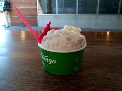 A snack at Pitango Gelato in Logan Circle.  I got three flavors: mojito, passion fruit, and pomegranate.