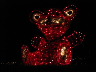 Giant teddy bear!  This was the only light display that had depth to it.  All of the others were flat.