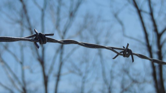 Barbed wire above a fence on the Howard County side along Brighton Dam Road.