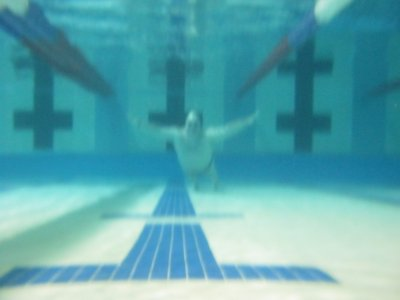 Swimming next the bulkhead.