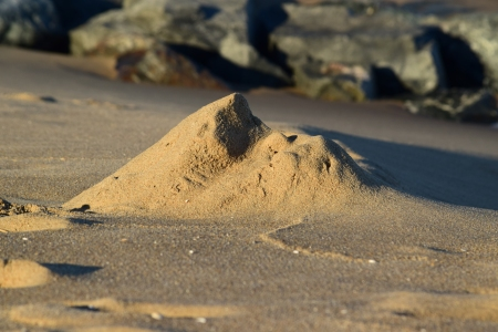 Spotted this eroded mound of sand near the water, and my guess is that this was once a sand castle of some sort, that has since been reshaped by nature.