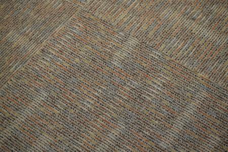 The carpet.