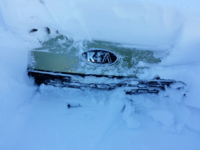 """Found the """"KIA"""" emblem and part of the grille."""