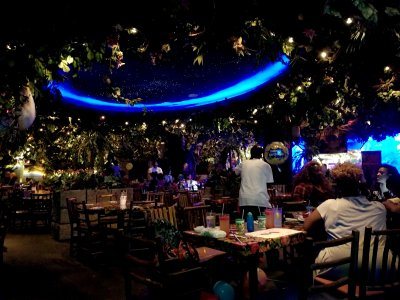 The inside of Rainforest Cafe, viewed from our table.