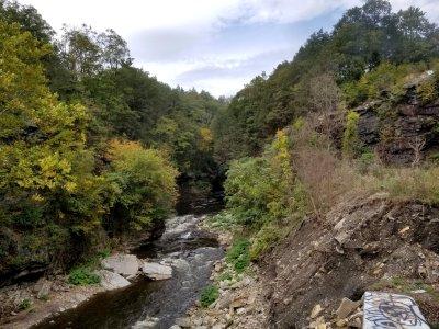 A stream.