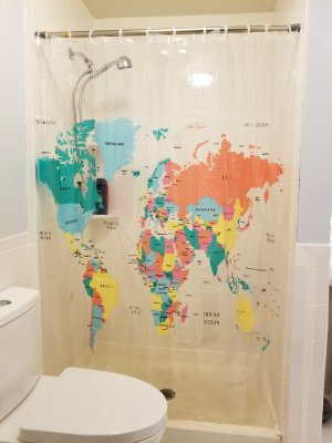 The new shower curtain