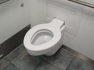 The toilet seat, fully deployed