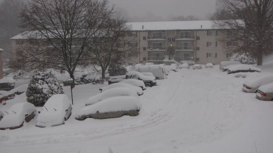 The next afternoon, snow has blanketed Hewitt Gardens Apartments.  We had more than a foot of snow at this point.