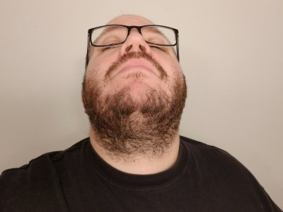 The final beard, after 29 days of growth