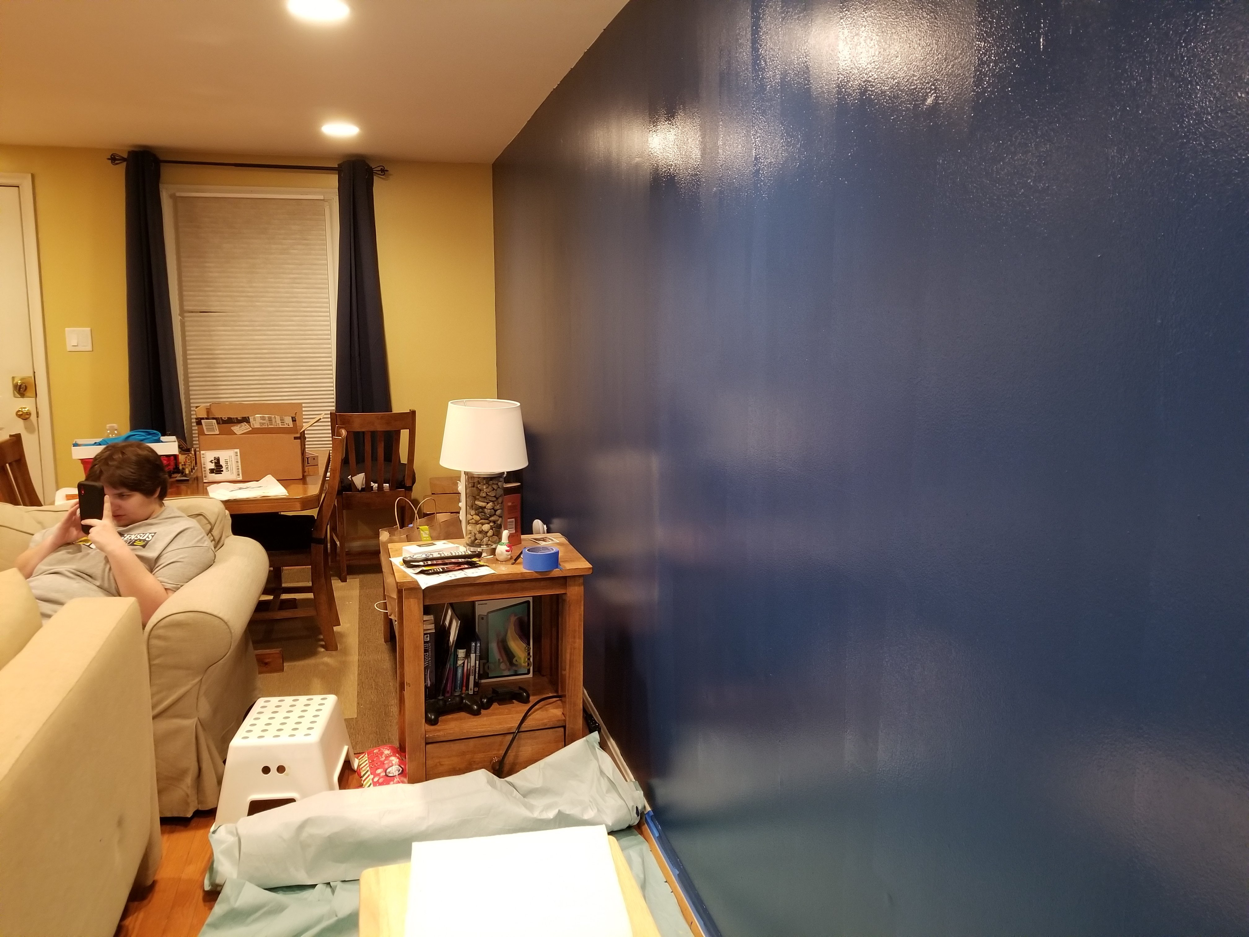 The Schumin Web » A paint job for the living room…