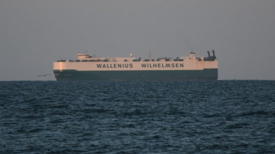 The second ship was operated by Wallenius Wilhelmsen, but unfortunately, my camera couldn't resolve the name because of distance.