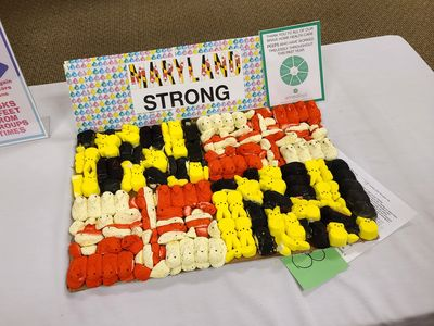 Peeps in the shape of a Maryland flag, because Maryland.