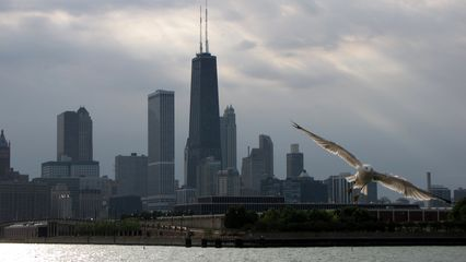 The bird in the lower right above is actually part of a larger photo of the skyline. I love this photo because of the bird, but I have no idea how I want to present it. Do I focus on the bird? Any ideas?