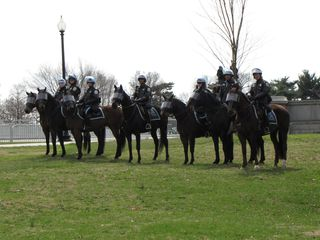 As we approached the Lincoln Memorial, we spotted a row of Park Police officers on horses.