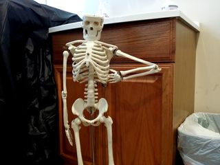 """The day after Piratz, I had an appointment with my doctor. First thing I thought when I saw this skeleton was, """"I'm a little teapot, short and stout. Here is my handle..."""" and then it needs to have the other arm positioned for a spout."""