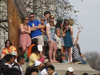 Bystanders watching from the sidelines, in this case, a ledge on the Natural History Museum.