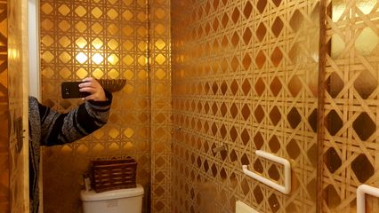 The house's half bath, with that awful gold wallpaper, was actually the best room in the whole house.