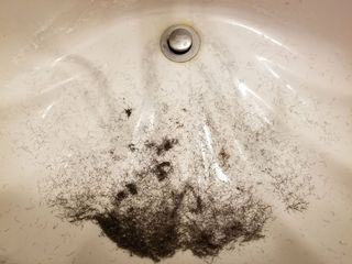 This was the beard in the sink after I finished shaving. Rest assured that I was glad to be rid of it.
