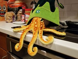 We also put Woomy in another hat, which we got from a TD Bank location in downtown DC. Woomy was none too pleased about this.