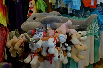 A pile of stuffed animals in one of the stores. We eventually bought one of the dolphins in the t-shirt, though not from this store.