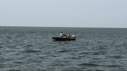 More people out fishing.