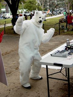 """Adam Eidinger """"got down"""" in the polar bear suit he was wearing. Goodness knows how warm it was inside that suit on this particular day."""
