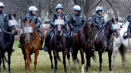 The Park Police officers were on horses.