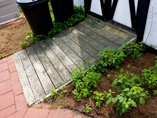 After 22 years of being out in the elements, the ramp had acquired a greenish-brown color. In addition, the left side of the ramp had settled slightly. I wasn't equipped to fix the settling, but I could certainly fix the color.