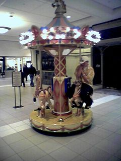 On February 26 at Fashion Square Mall in Charlottesville, a teen rides the merry-go-round while his friends watch off camera.
