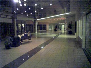 """On the same day, I also went to Tanglewood Mall just outside Roanoke.  This was my first time going to Tanglewood after seeing it on deadmalls.com.  Learning the history of the mall caused me to notice some vintage features left in place after two interior renovations.  Below left shows what is believed to be an original ceiling from the 1970s at the """"dead"""" end of the mall where there is an empty anchor store.  Below right shows what is believed to be a swath of original flooring from the 1970s next to a jewelry store near the center of the mall.  The flooring is dark wood parquet, and also brick."""
