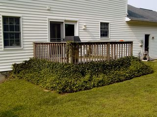 Before the work started, we had ivy growing around the bottom of the deck, the area was very much open air, and the deck had stepping stones leading to it.
