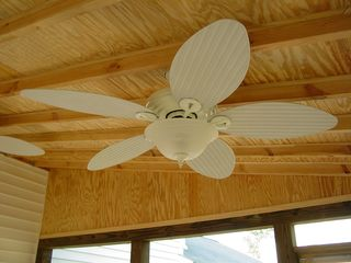 I absolutely love these fans. The thing I like about them is how the blades kind of look like huge leaves.