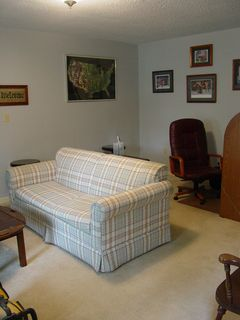 Before the work began, though, the living room had the original beige carpeting. Very light and prone to stains.