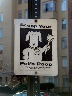During my January 18 DC trip, I spotted this sign during my walk along 16th Street NW. There were actually a number of similar signs along 16th Street. Perhaps there's a pooper-scooper problem?