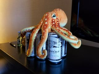 That morning, we also found Woomy, a stuffed octopus who came with us on this trip, guarding the six-pack of non-alcoholic beer. Though knowing what a curmudgeon Woomy is, I suspect that he didn't like it.