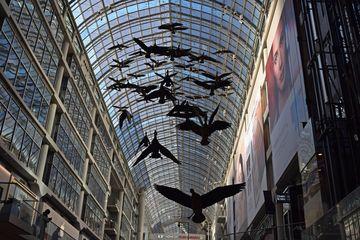 Flight Stop in the Toronto Eaton Centre.