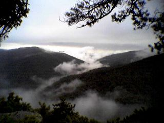 This photo was taken August 9 from Twenty Minute Cliff on the Blue Ridge Parkway with my cell phone. Not too shabby. I like the way the clouds are low, amongst the mountains.