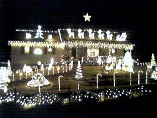 I include this photo from the light-seeing trip that Sis and I took on Christmas Eve mainly so that you can get a closer look at this... (click the picture!)