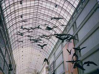 Also in this area is the Toronto Eaton Centre's famous flock of Canadian geese. It was designed by Michael Snow, and is entitled Flight Stop, consisting of life-size Canadian geese hung from the ceiling.